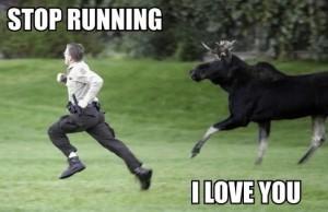 moose meme (2)