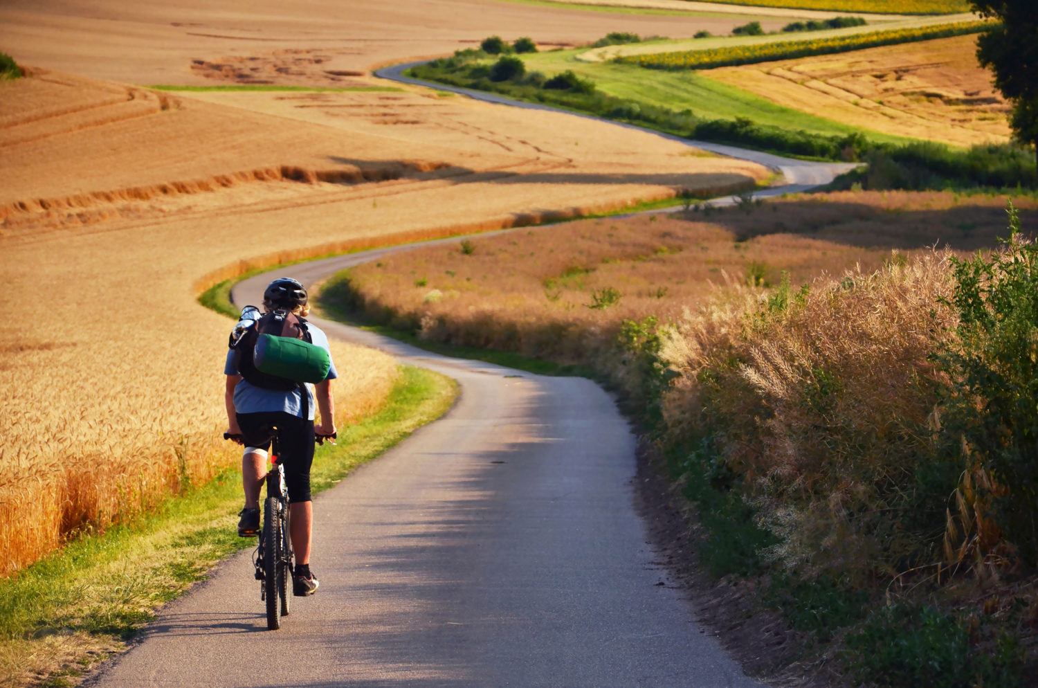 Cyclist with a backpack on a small road between fields cycling from Prague to Vienna