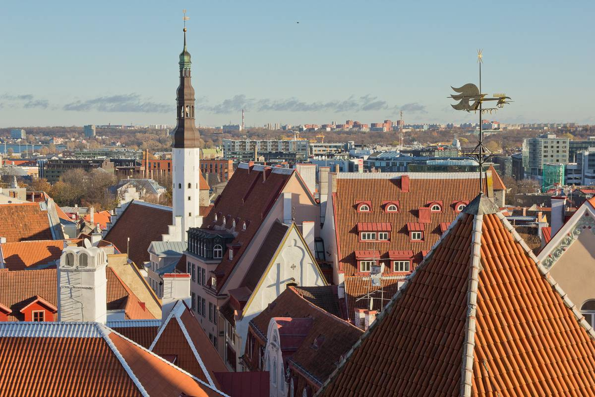 Tallinn Traveller Tours To Riga